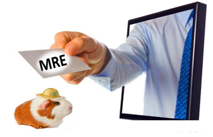 Élections législatives au Maroc : Les réactions des associations de MRE se poursuivent