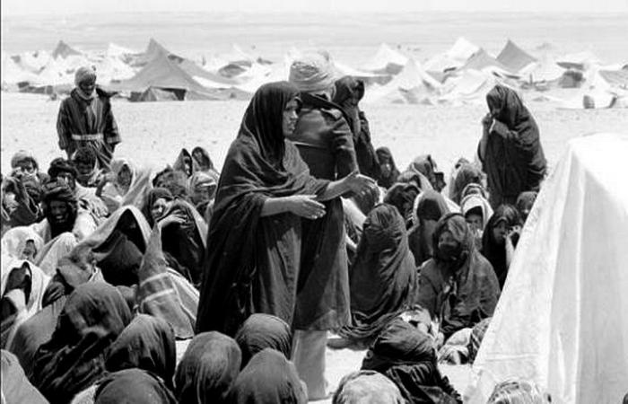 Services français: «Il était impensable pour les habitants de Tindouf de renoncer à leur marocanité»